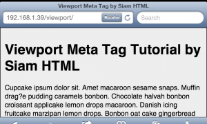 viewport_meta_tag_device_width_hz_scale_1